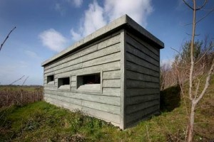 Image: The Hide Sculpture by Garret Phelan, commissioned by Fingal County Council, one of the sites for An Urgent Enquiry